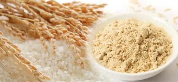 protéine de riz
