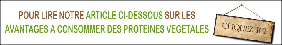 Pour lire notre article ci-dessous sur les avantages à consommer des protéines végétales